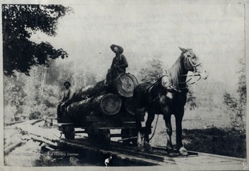 Men with logs on horse-drawn log tram. O. Homer Floyd Fansler, Hendricks, WV