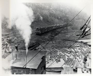 Cass, W. Va.; Logs floating in water and loaded on train; D.D. Brown Collection