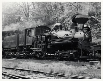 Train engine on tracks in the forest; Cass Scenic R.R.; Cass, WV; Bagdon.