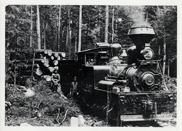 Cass, W.Va.  Pulp and Paper Co. Engine No. 2; Engineer Lewis Collins sitting on stump.  Note the size of timber that was cut from pulpwood.; A.F. Burrell, Box 207, Cowen, WV