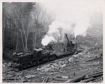Train engine and crane working in log yard.