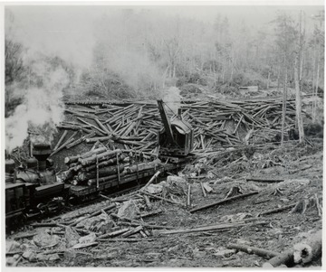 Loader placing logs on lumber cars.