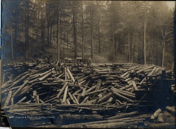 Loggers pose atop a large pile of logs.