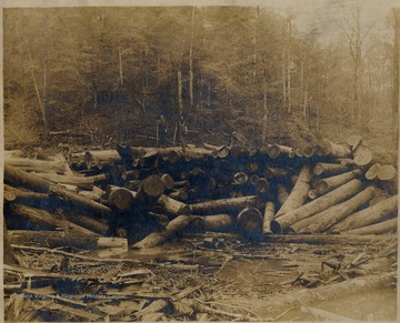 Two crew members pose on top of log pile in water; Pardee and Curtin Lumber Company.