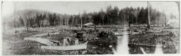 Stumps and logs of a cleared out area.  Camp and log train in background.