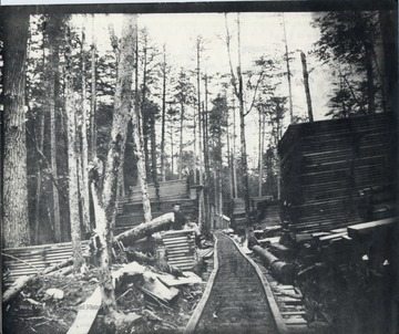Lumber piles beside a train track.  Man sitting on top of one lumber pile.  Original from Homer Floyd Fansler, Hendricks, W.Va.