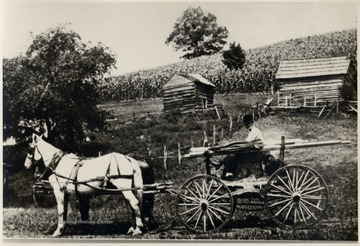 Shooter's wagon with his team of horses carrying nitroglycerin.