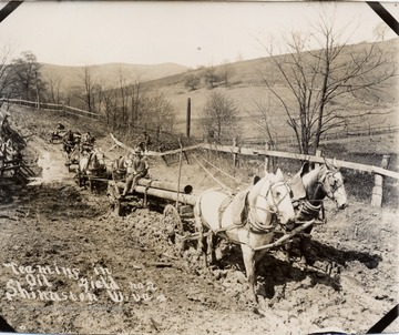 Team of horses hauling pipes through the mud.