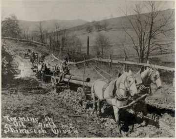 Teams of horses hauling pipe through the mud.