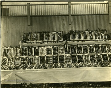 A fruit stand full of apples in Nelson County, Virginia.  Compliments of the Nelson County Horticultural Society, Lovingston, Va. Sent to Russell T. Gist by John B. Whitehead Jr., Lovingston, Va.