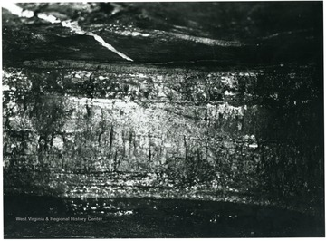 'All white oak mines work the same seam of coal, viz: Sewall. THe face of one of the working places or rooms is shown in this picture. The coal averages about 48 to 50 inches in thickness. This working place is now ready to be cut by the undercutting machine, so it can be shot down be the miner and loaded into cars for transportation to the tipple. The white line on the roof in this picture is the center line of the room set by the engineers to guide the men operating the mining machine in driving the room straight.'