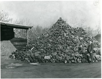 Man examines White Oak coal after delivery in the dealers yard in Indianapolis.