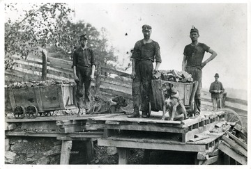 Two dogs harnessed to coal carts. About 1890, Ohio Coal Mine. This photograph is the property of Pittsburgh Consolidation Coal Co.