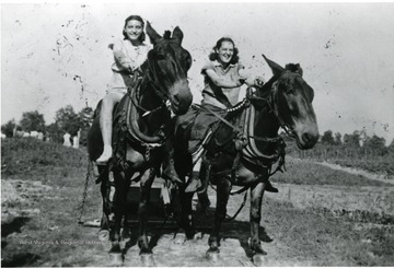'Left: Violet Molisee Croston; Right: Francis Molisee, Cousin of Violet; 2 Mules: Violet is on Jack, Francis is on Jerry'