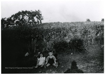 Two children sit on the outskirts of a garden.