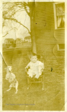 Small Boy sitting in a rocking chair.  Dog standing on legs beside boy.