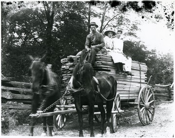 A man drives the wagon of lumber while two ladies sit on the pile with him.