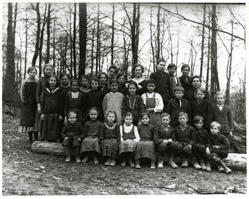 "Information with the image included, ""Virginia Burky: 3-4 row 2 R Elmer and Herman, #1 back row R Jim Betler? Nellie Been teacher middle back row, George Betler in front of Jim maybe, Alma Betler Burky third form teacher on left."""