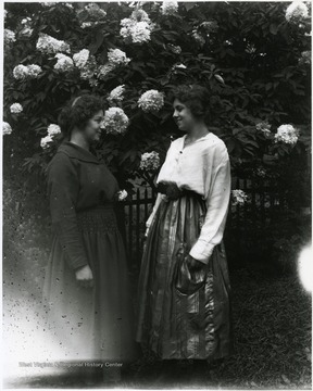 Two women standing in front of a blossoming bush and looking at each other.  Helvetia, W. Va.
