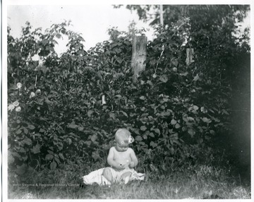 A baby sitting on a blanket near some trees in the grass in Helvetia, West Virginia.