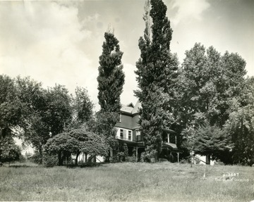 Part of the house can be seen behind trees.