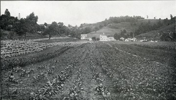View of garden of the West Virginia Industrial Home for Girls, showing the farm house and barn in the distance.