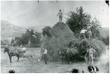 'Jay Lambert on hay stack.  Ona and Otho Davis on load, Miles Thompson by the wagon, George Davis on the rake and Jim Skiles or Loyd Lambert pitching hay. George Davis farm is located on Rt. 220 north of Franklin, and later it became the Foster Dyer Farm.'