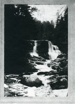 'A view of Blackwater Falls in Tucker County, West Virginia, before the Virgin Timber was removed. O. Homer Floyd Fansler, Hendricks, W. Va.'