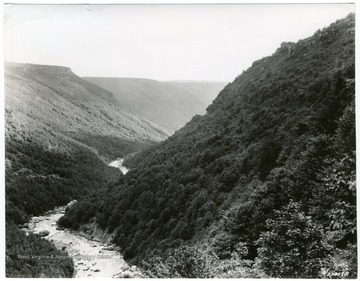 'West Virginia is often called the mother of rivers.  Here, through the green forests of the Blackwater Canyon, near Davis, runs the clear waters of the upper Monongahela River on its downstream course.'  This print may be reproduced only with the credit line: U. S. Forest Service.