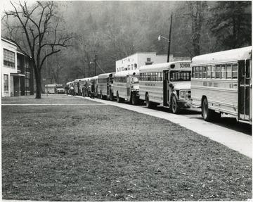 Fleet of school buses parked along a lane in front of a school.