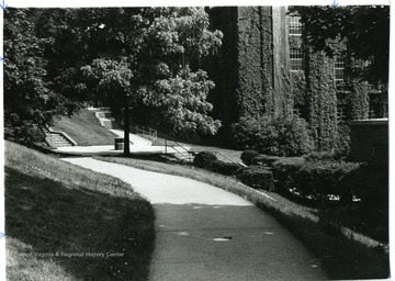 View of campus walks, Elizabeth Moore Hall is straight ahead and Armstrong Hall is on the right.