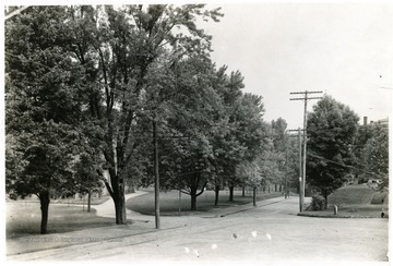 'View of University grounds looking north from the Old Library. To the right is the Old Experiment Station, Science Hall in the middle, Martin Hall on the left.'