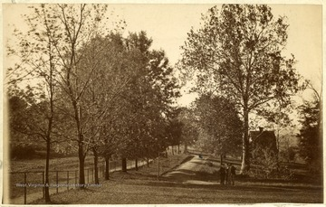 'Campus of West Virginia University looking down University Avenue, then called Front Street, past the present location of Elizabeth Moore Hall. Note the sycamore tree to the right of center, which is only tree still standing. Beyond it he building is the old Millspaugh home, now site of the President's Home. Taken about 1890.'