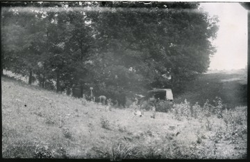 Gen. no. 14, neg. by W, No. 6.
