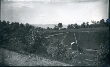 A picture of a field with a mountain in the backgound. '55 D(31); Thu. July 17, 1884 2-30 pm'
