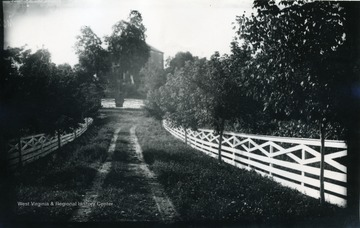A photograph of a fence-lined road leading up to a house. '167.W.(70); August 6, 1884, Wednesday 5 pm'