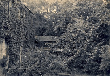 A photograph of a home in a heavily wooded area.