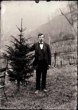 A portrait of man near a small evergreen tree.