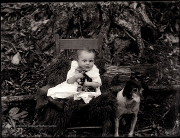 A portrait of infant in chair holding a tabby cat while a dog sits next to the chair.