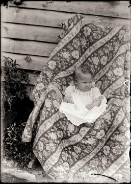 A portrait of infant sitting in chair draped with fabric.
