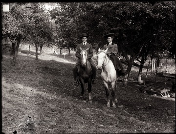 A portrait of man and woman on horseback taken in orchard.