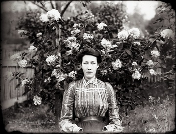 A portrait of woman sitting just below flowering hydrangea.