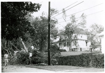 Workers clearing the fallen trees by tornado on the corner of Lawman Street and Cherry Avenue.