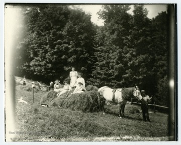 Taking in hay with a horse and sled.