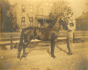 African-American man holding a horse in front of the Gibson - Packette house on Samuel Street.