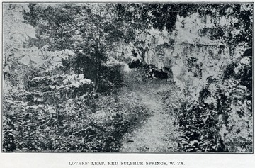 "A mountain path leading through forest and past a rock wall. The image is from a pamphlet, ""Red Sulphur Springs, Monroe County, W. Va."""