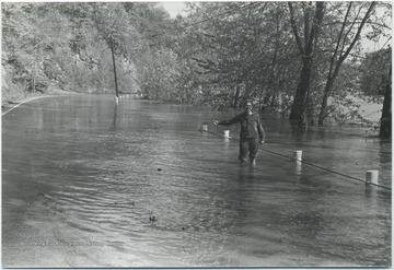 An unidentified woman standing in knee-high water with her pants rolled up holds her hand out with her thumb up as if signaling for a ride.