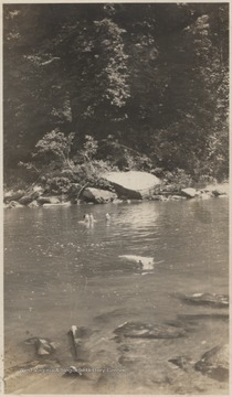 Three unidentified persons and a dog are pictured in the water.About a 1/4 mile up the river from this location near the mouth of the river, baptizing's were held.
