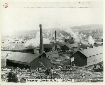 This image is part of the Thompson Family of Canaan Valley Collection. The Thompson family played a large role in the timber industry of Tucker County during the 1800s, and later prospered in the region as farmers, business owners, and prominent members of the Canaan Valley Community.A landscape view of a tannery in Davis, W. Va.