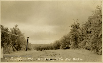 This image is part of the Thompson Family of Canaan Valley Collection. The Thompson family played a large role in the timber industry of Tucker Country during the 1800s, and later prospered in the region as farmers, business owners, and prominent members of the Canaan Valley community.